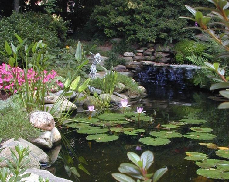 Proper Planning Outdoor Haven Butterfly Garden