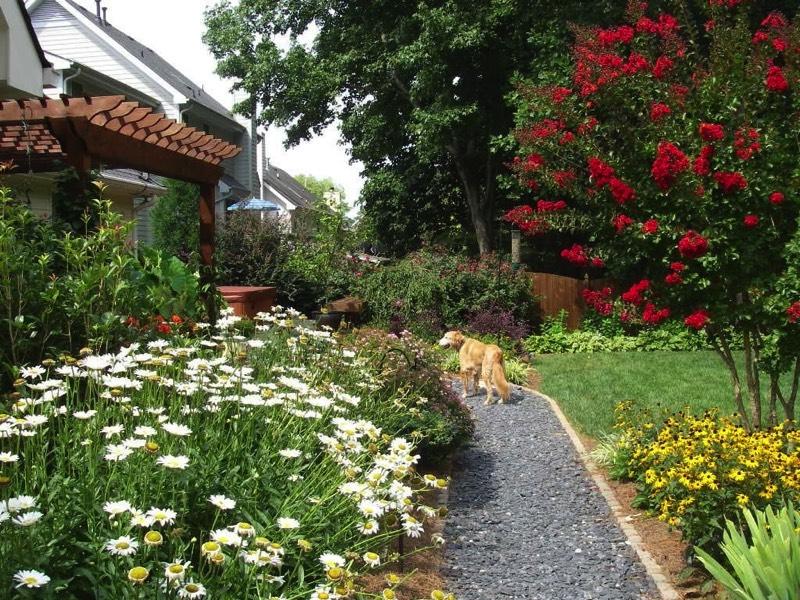 Garden Design For Dogs dog-friendly-landscapes