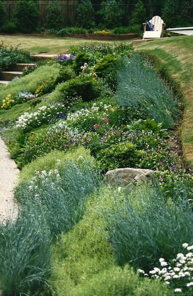 Lovely hillside perennial garden