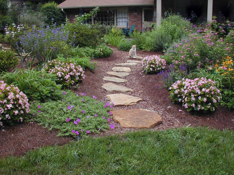 natural stepping stone path