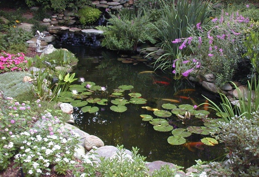 Ponds water features for Fiberglass garden ponds