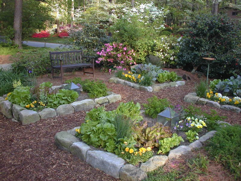 pretty vegetable garden salad garden organic - Herb Garden Design Examples