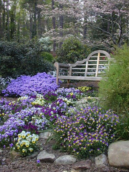 Bench purple perennials annuals side yard