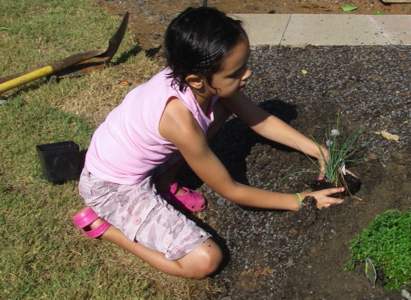 Learning how to plant herbs and veggies