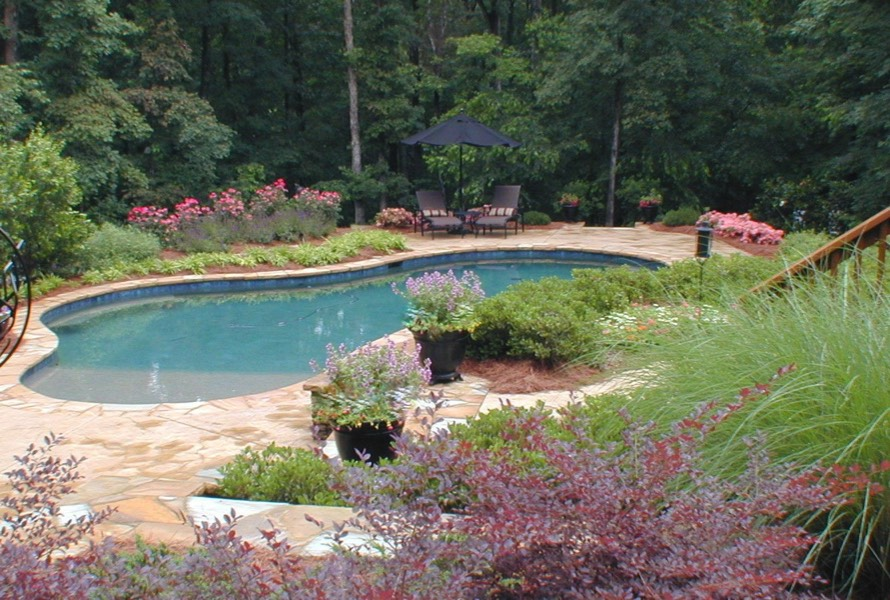 outdoor living swimming pool landscape